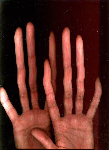 Women Find Men with Long Ring Fingers Attractive | Impact Lab