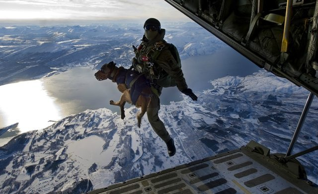 jumping out of a plane with an explosives sniffing dog 0oe4