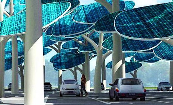 solar forest 2