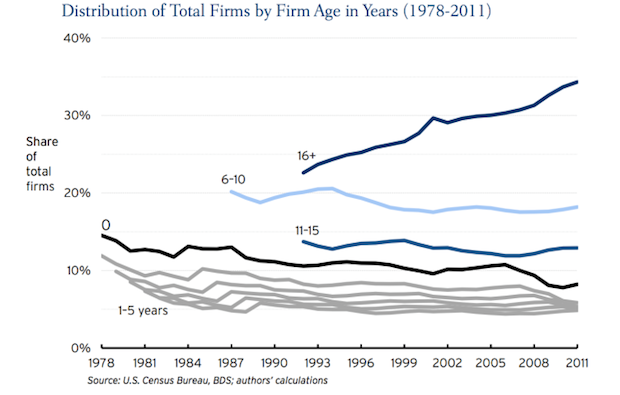 distribution of firms