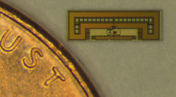 Ant-sized-chip