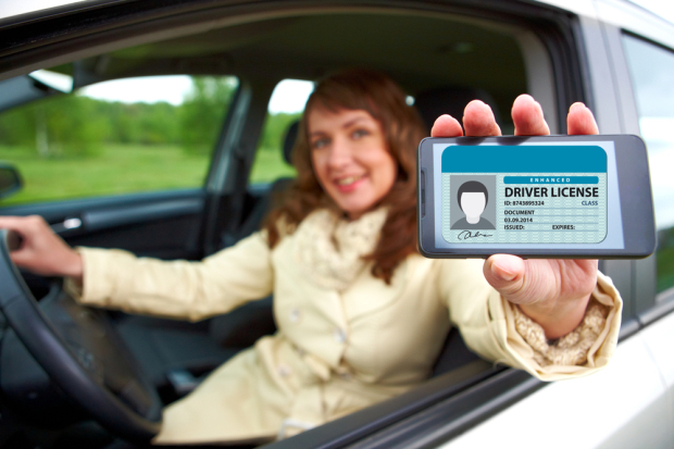 iPhone-Drivers-Licenses-620x413