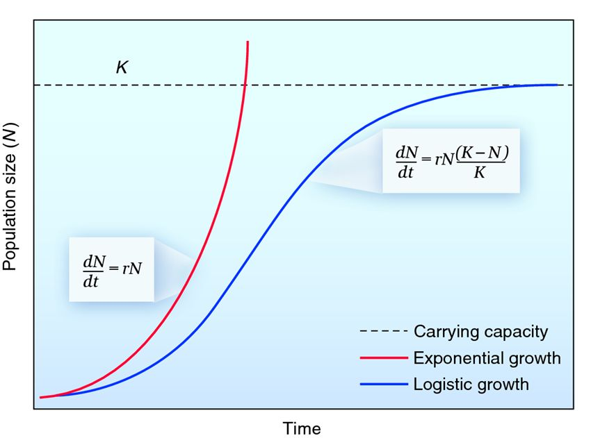 Exponential-vs-Logistical-Growth