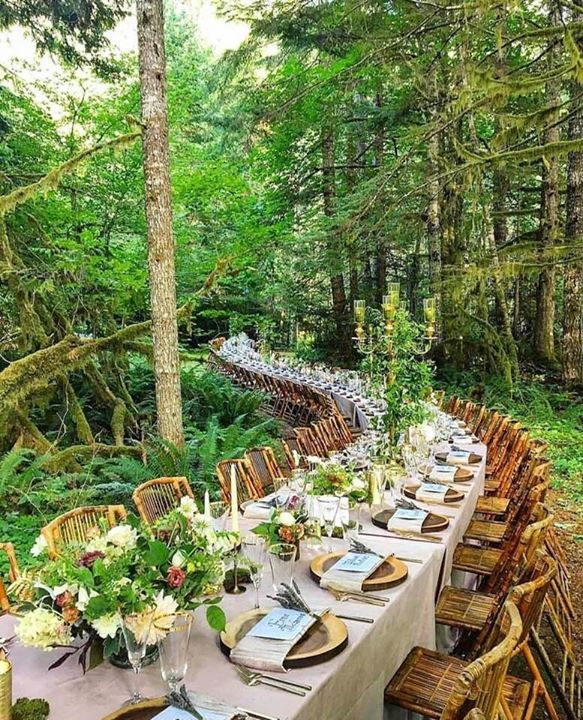 8.) I was invited to the never-ending dinner in the forest!